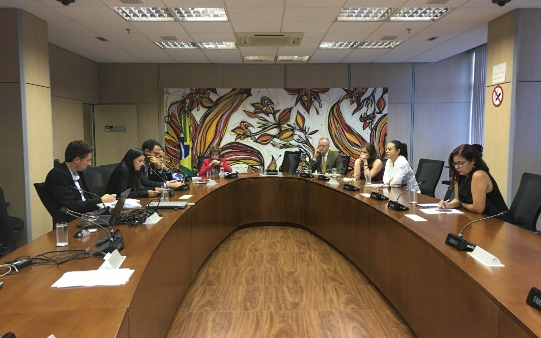 Advocacy Meeting Between Community of Practice and the Ministry of Environment in Brazil