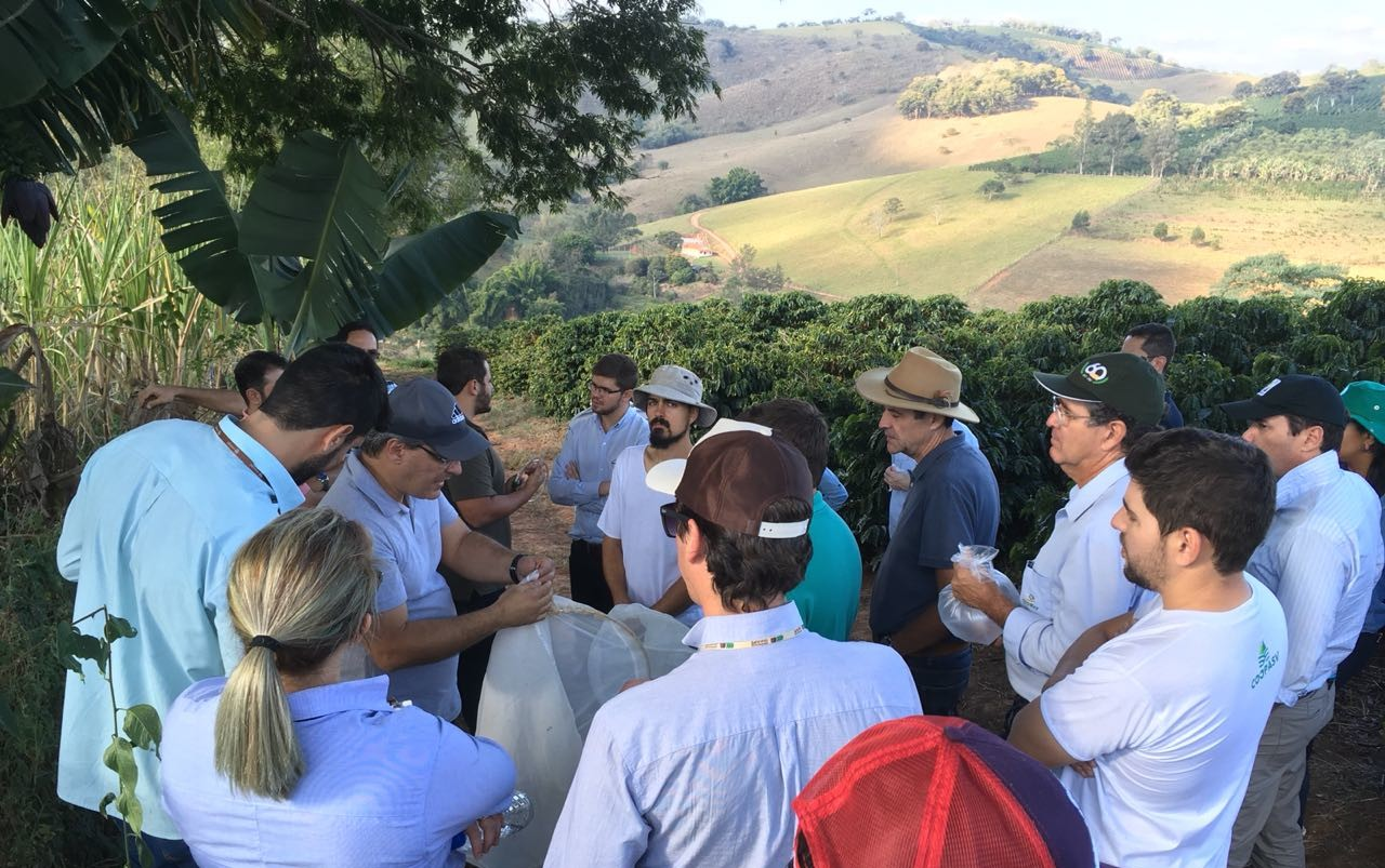 South of Minas_ implementing various adaptation practices