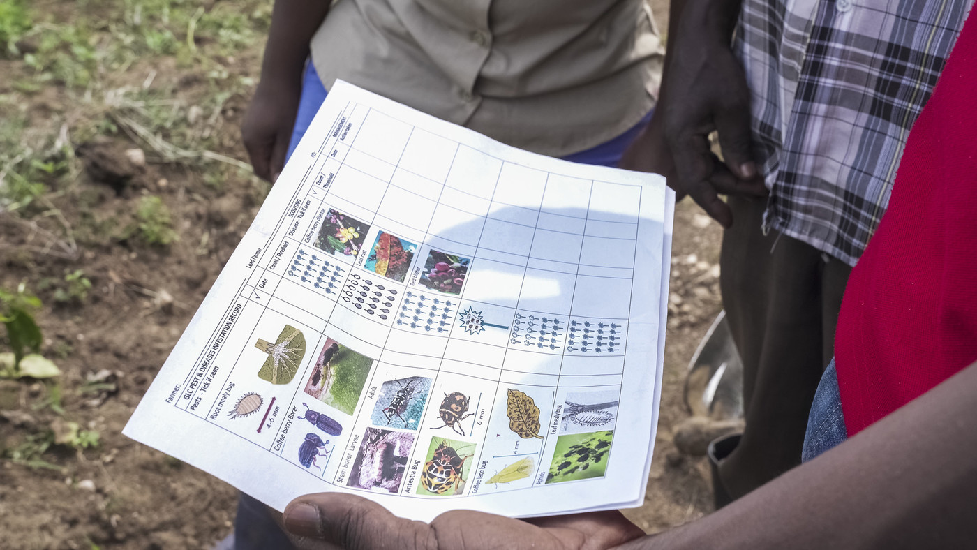 farmers are looking at sheet with usefull informations